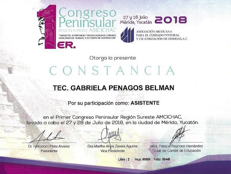 Titulo_Gabriela_Penangos_13