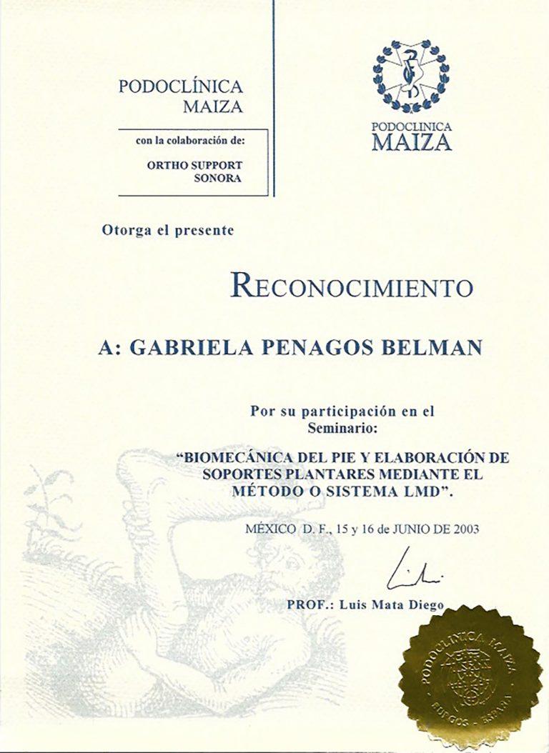 Titulo_Gabriela_Penangos_6