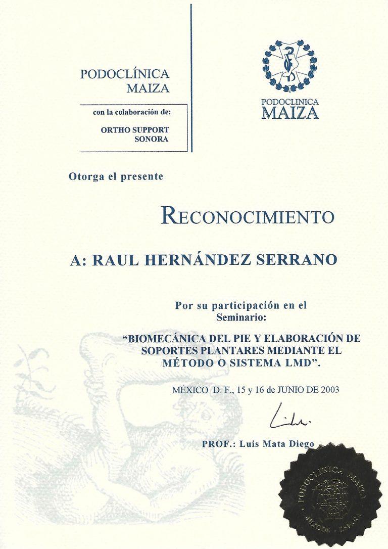 Titulo_Raul_Hernandez_11